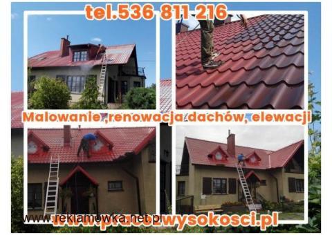 Malowanie ,renowacja dachów, elewacji. Czyszczenie kostki brukowej.