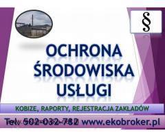 Wprowadzenie raportu, Kobize, cena tel, 502-032-782, wykonanie zgłoszenia, Gdańsk