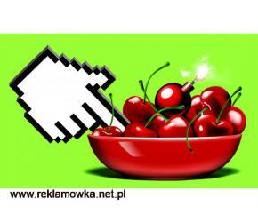 Turboseo.pl-Strony internetowe,Sklepy internetowe,Pozycjonowanie