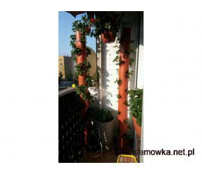truskawki poziomki zioła uprawa w rurze PCV ogród dekoracje