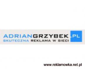 Reklama w sieci - adriangrzybek.pl