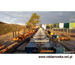 Linia sortowania drewna