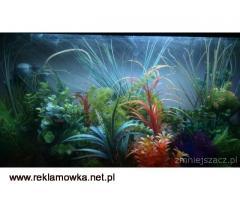 Sprzedam nowe super akwarium nowoczesne 150 l z całością z roślinkami i skałkami
