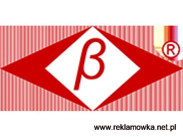 BETA SECURITY ISO