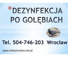 Sprzątanie balkonów po gołębiach, cena tel 504-76-203, gołąb utylizacja., czyszczenie, dezynfekcja,