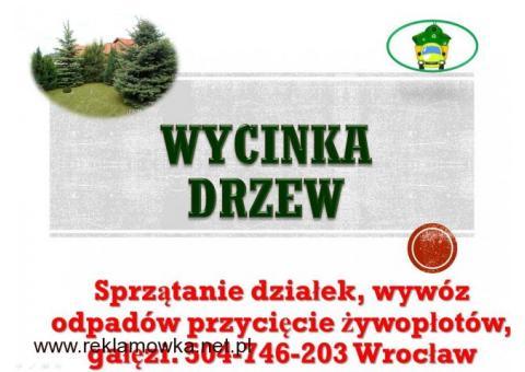 Wycinka drzewa, tel 504-746-203, wycinanie drzew, gałęzi, cena,  Wycinanie drzew, przycięcie gałęzi,