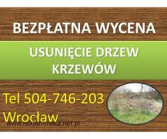 Czyszczenie działek, cennik tel. 504-746-203, karczowanie terenu,Wrocław.Wykoszenie badyli,chaszczy.