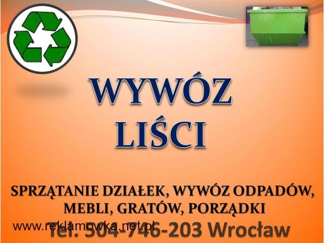 Grabienie liści, cena tel 504-746-203, wywożenie liści, Wrocław, sprzątanie, firma, cennik - 2/2