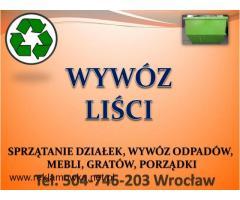 Grabienie liści, cena tel 504-746-203, wywożenie liści, Wrocław, sprzątanie, firma, cennik