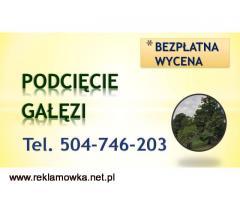 Przycięcie drzew, gałęzi, tel 504-746-203, podcięcie drzewa, Wrocław  Wycinka drzew, oraz wywóz