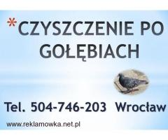 Czyszczenie z odchodów gołębich, cena, te. 504-746-203. Wrocław, sprzątanie balkonu, strychu