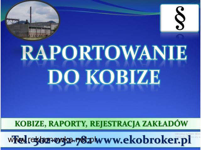 Założenie konta w bazie Kobize, cena tel. 502-032-782. Wykonanie raportu.2017,2018