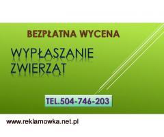 Zwalczanie kuny,tel. 504-746-203, zabezpieczenie domu, cena, ochrona przed kunami, cennik, Wrocław