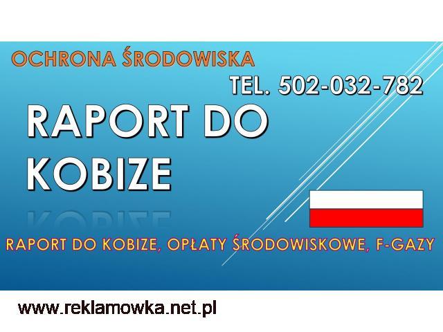 Raport do Kobize, cena, tel, 502-032-782. Opłaty za środowisko - 1/2
