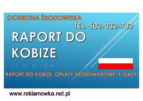 Raport do Kobize, cena, tel, 502-032-782. Opłaty za środowisko