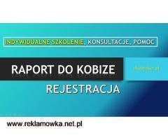 Szkolenie Raport do Kobize, Ćwiczenia, Warsztaty, cena , sprawozdanie