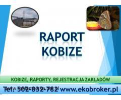 Jak wypełnić Raport do Kobize, do kiedy i jak złożyć raport do bazy emisji ? cena