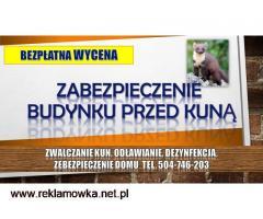 Zabezpieczenie domu przed kuną, tel. 504-746-203, płoszenie, zwalczanie, Wrocław
