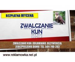 Zwalczanie kun, tel. 504-746-203, odławianie, zabezpieczenie domu