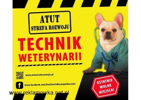 Technik Weterynarii w ATUT Strefa Rozwoju Chorzów !