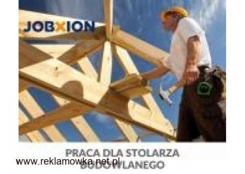 Poszukiwani stolarze na projekt budowy nowych domów (Holandia)