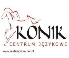 Opiekunka do samotnej Seniorki - od 14.09 - 1300 euro netto