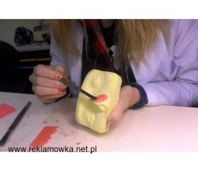 techniki dentystyczne Zgierz, Płock